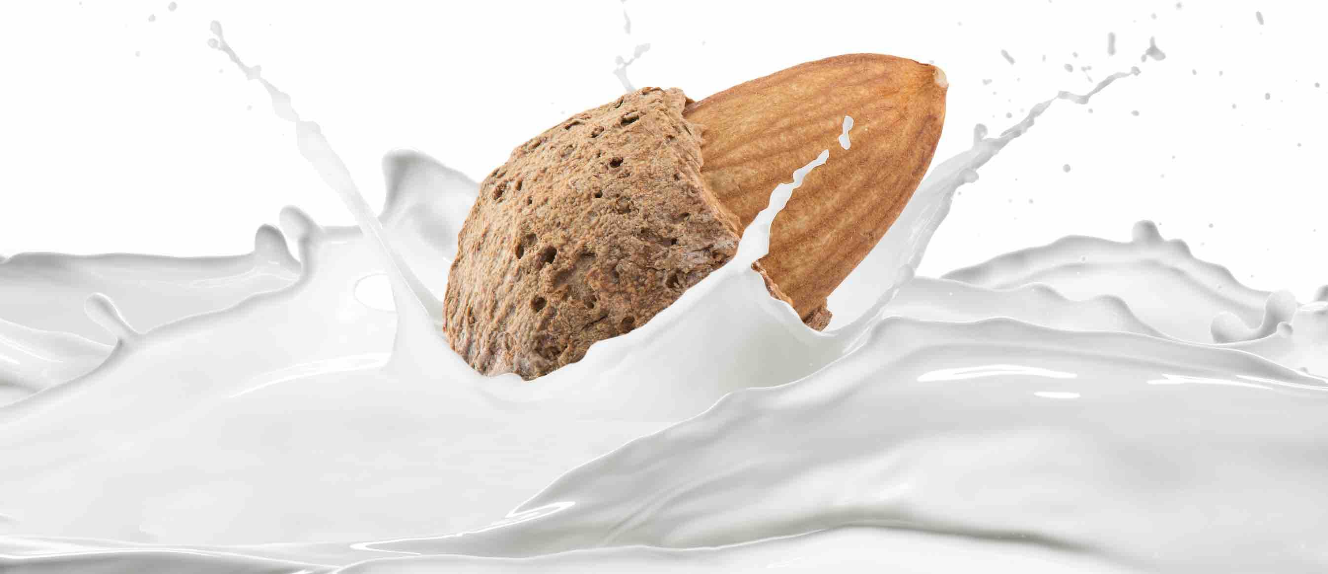 leche de almendras marcas y precios